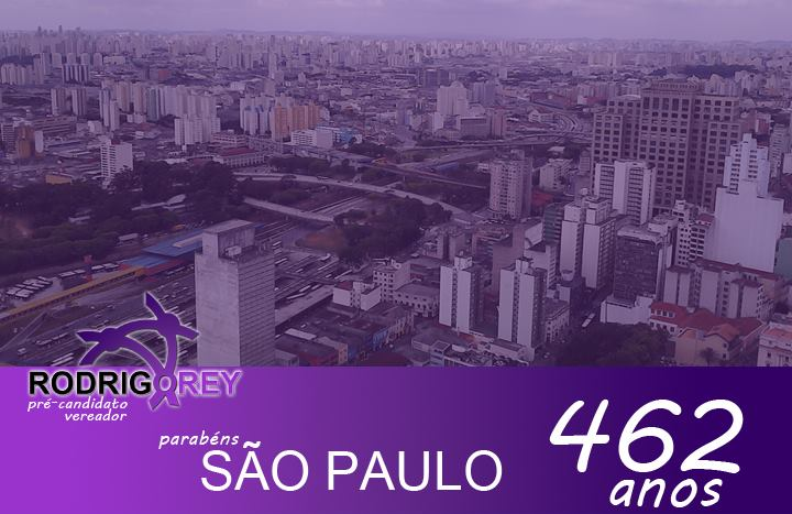 Read more about the article São Paulo 462 anos