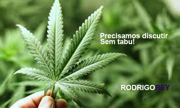 You are currently viewing Marcha da maconha